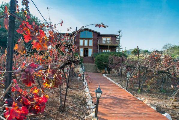 צימרים כפר הנופש אלומה בכפר - לחופשה מרעננת בגליל עליון