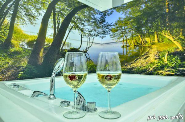 צימרים סוויטות אביאור - לחופשה מרעננת בגליל עליון