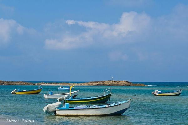 צימרים חלום בדור - לחופשה מרעננת במישור החוף