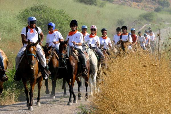 חוות עמק הבוקרים | טיולי סוסים ברמת הגולן