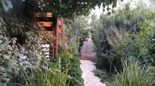 צימרים ארץ הגליל - לחופשה מרעננת בגליל עליון