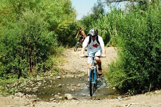 טיולי אופניים | טיולי אופניים בצפון