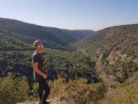 צימרים יוקרתיים | סויטת האביר הלבן בגליל המערבי