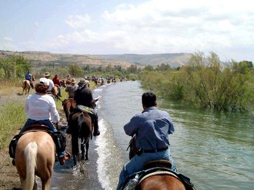 חוות רמות טיולי סוסים