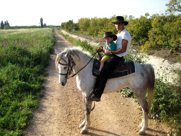 טיולי סוסים חוות השיירה | טיולי סוסים