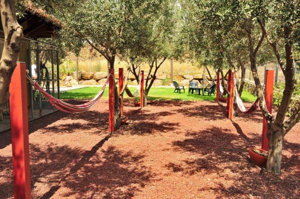 צימרים אורחן בצל הזית - לחופשה מרעננת במצוק עורבים קלע