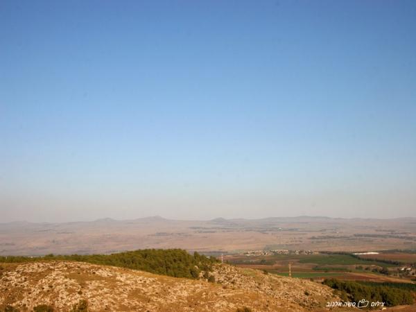 צימרים סוויטות הבוסתן הגלילי - לחופשה מרעננת בגליל עליון