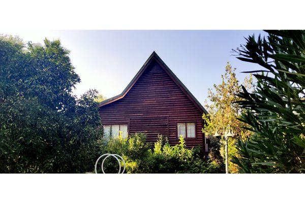 צימרים בית העץ של סוזנה - לחופשה מרעננת בגליל עליון