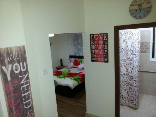 room dream-11