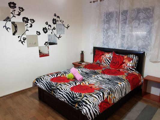 room dream-2